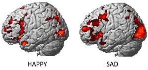 Happy and Sad brains or just scientists making mistakes again