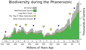 Extinction evidence points to only 5 mass extinctions not 6