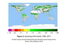Greening Earth